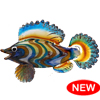 CZ.119    XL Rainbow Fish